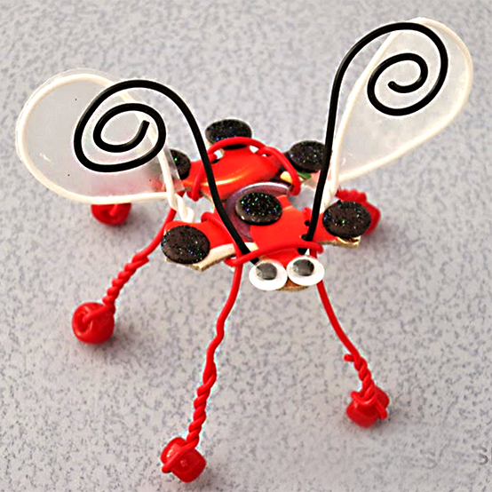 lady wire bug